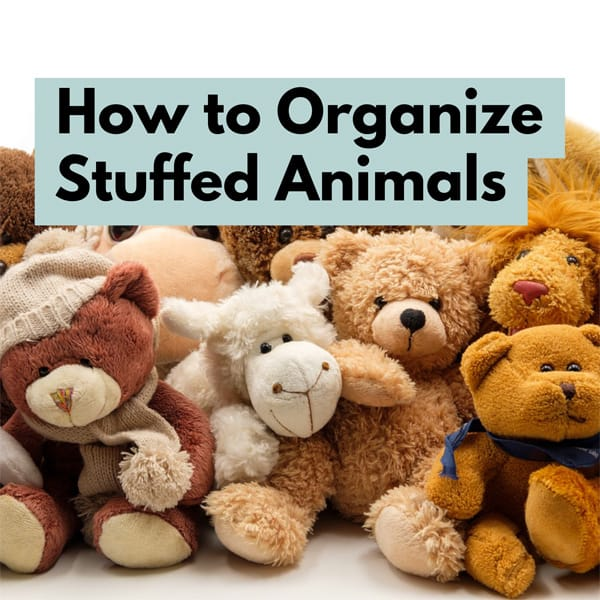 How to Organize Stuffed Animals